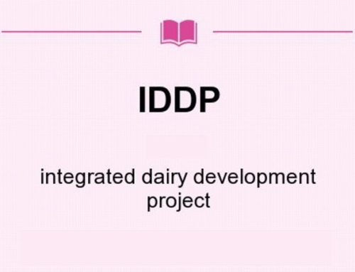 IDDP PROJECTS